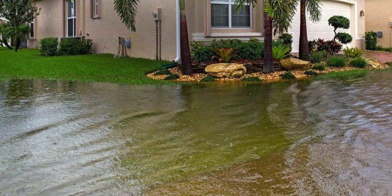 yard flood