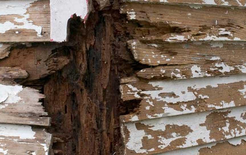 rot repair