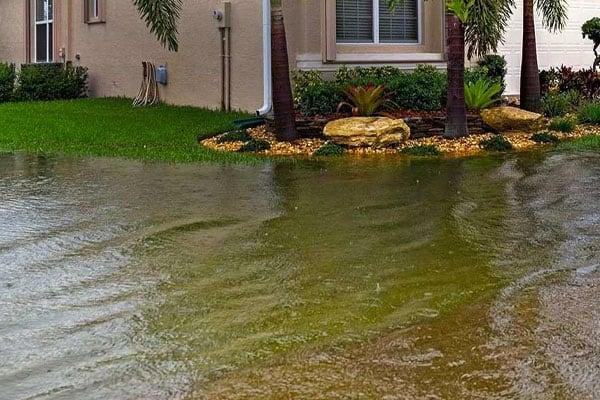 yard drainage